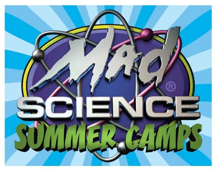 Summer Camp Logo Ball